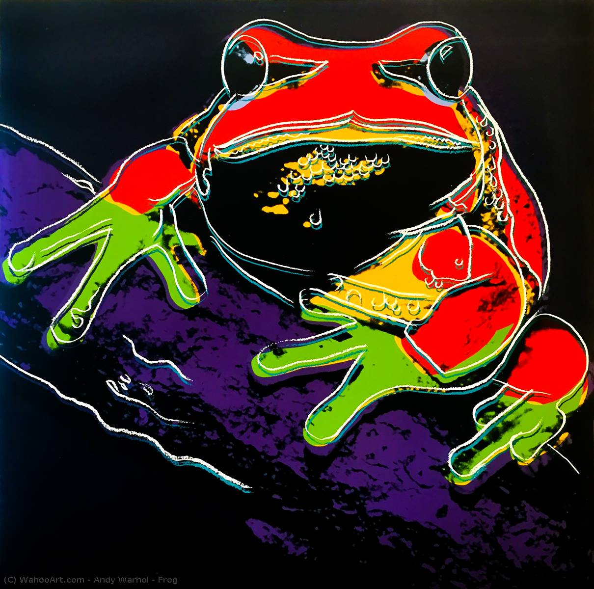 famous painting Frog of Andy Warhol