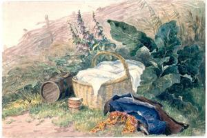 David Cox - Still Life With Basket, Foxgloves, Clothes