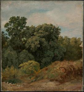 Jasper Francis Cropsey - Study of a Clump of Trees