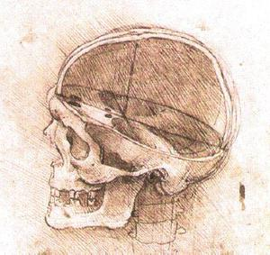 Leonardo Da Vinci - View of a Skull