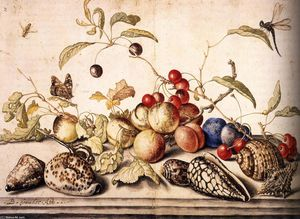 Balthasar Van Der Ast - Still-Life with Plums, Cherries, and Shells