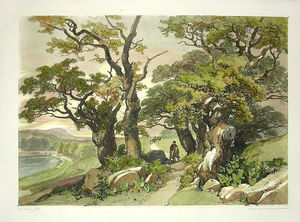 James Duffield Harding - Hand-coloured Tree And Landscape