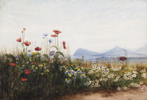 Andrew Nicholl - Poppies, Cornflowers And Daisies On Killiney Hill; Killiney Bay, Bray Head And The Sugar Loaf Mountain In The Distance