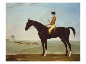 John Byam Liston Shaw - Chesnut Racehorse With Jockey Up On Newmarket Heath 18th Century
