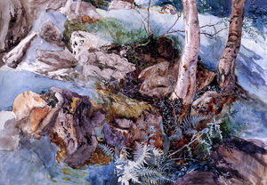 John Ruskin - Study of the Rocks and Ferns Crossmouth