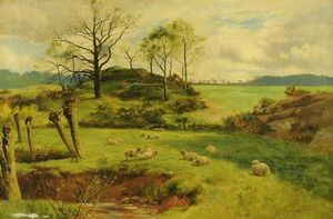 Walker Stuart Lloyd - Sheep in Pasture