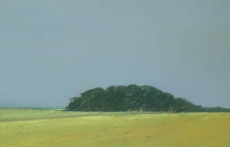 famous painting Large Harvest Field and Woods near Happisburgh, Norfolk of Colin Self