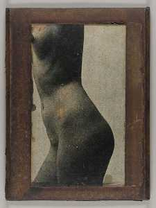 Joseph Cornell - Untitled (side view, nude female torso)