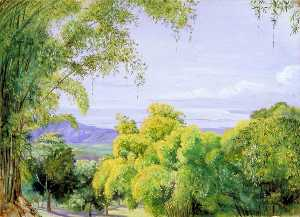 Marianne North - View over Port Royal, Jamaica, with Bamboos in the Foreground