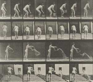 Eadweard Muybridge - Woman Emptying a Bucket of Water Plate 401 from Animal Locomotion (1887)