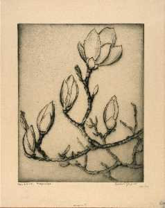 Bertha Evelyn Jaques - April Buds Magnolia