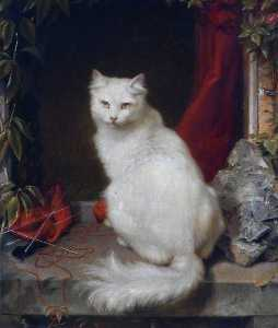Clement Burlison - White Cat
